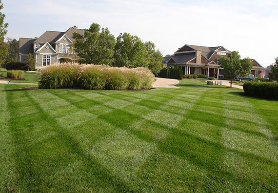HealthyLawn Turfcare is an affiliate company of Peabody Landscape Group landscaping company in Columbus Ohio