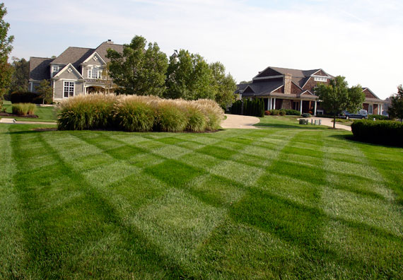 HealthyLawn Turfcare